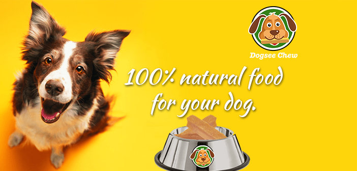 Bengaluru-based Dog Food Startup, Dogsee Chew, Takes To Angel Funding